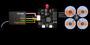 CC3D Connection