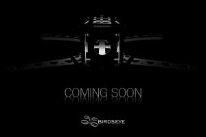 KillerBEE_Birdseye